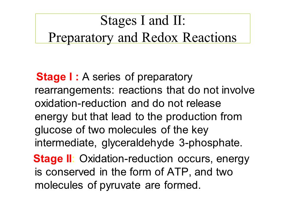 Stages I and II: Preparatory and Redox Reactions