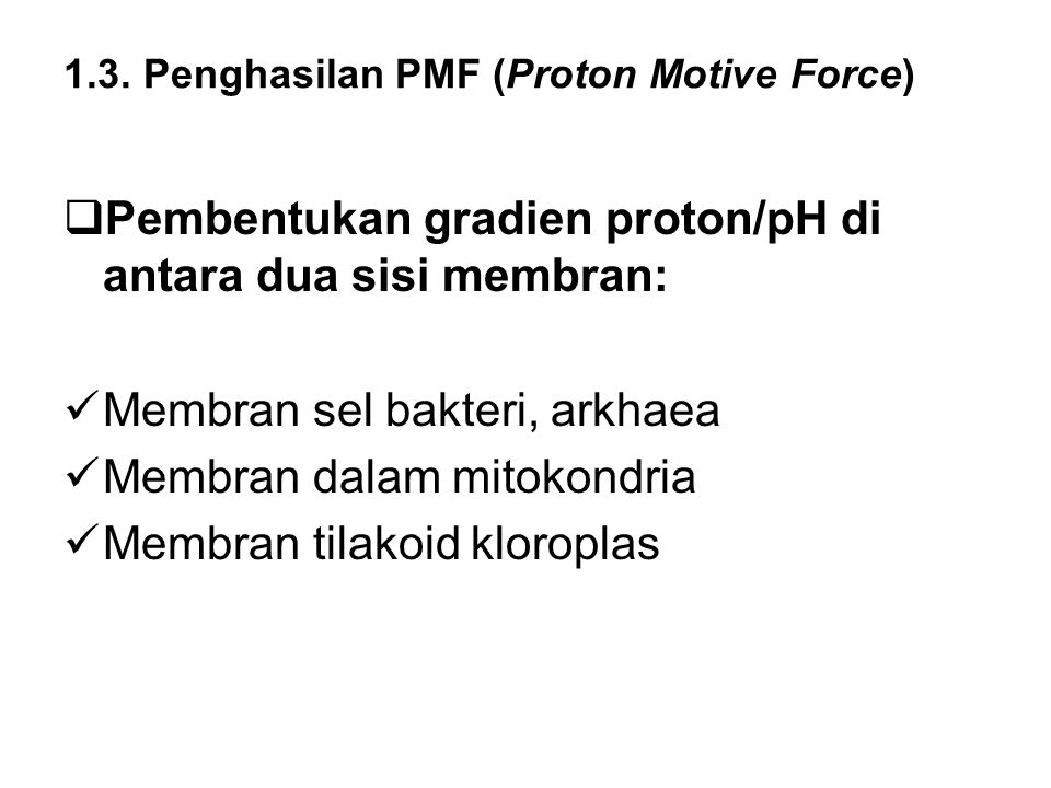 1.3. Penghasilan PMF (Proton Motive Force)