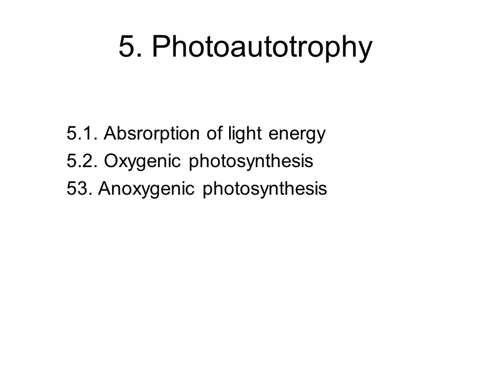 5. Photoautotrophy 5.1. Absrorption of light energy