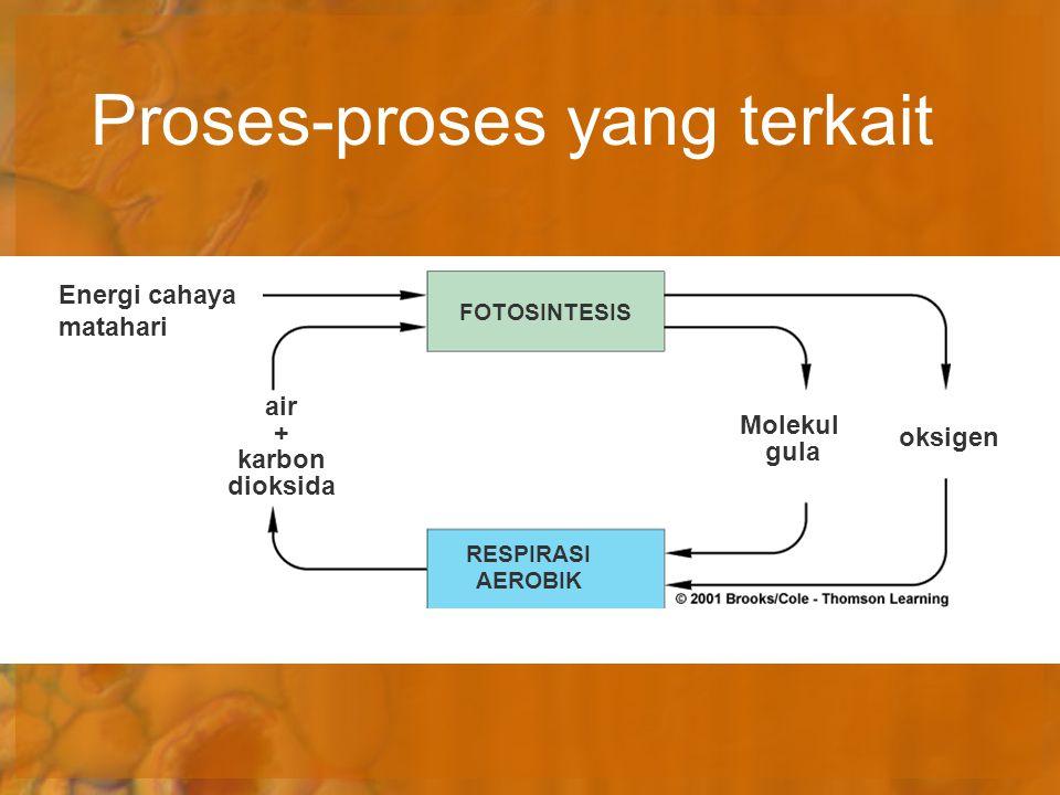 Proses-proses yang terkait
