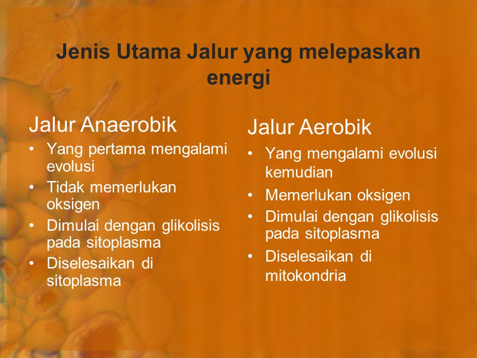 Jenis Utama Jalur yang melepaskan energi