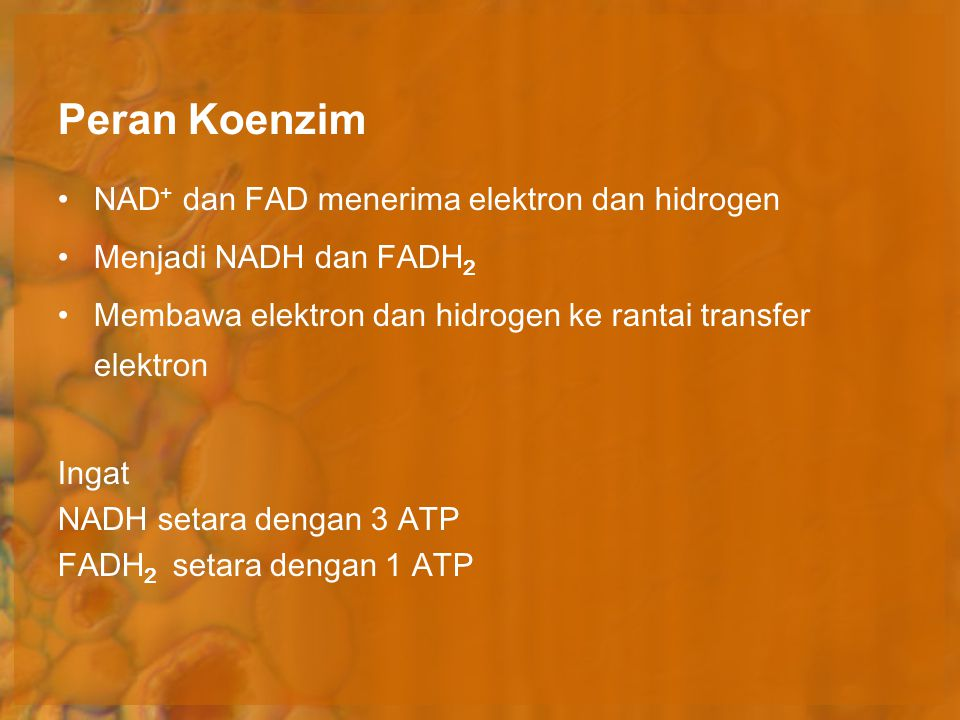 Peran Koenzim NAD+ dan FAD menerima elektron dan hidrogen