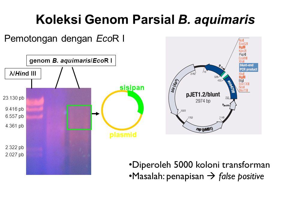 Koleksi Genom Parsial B. aquimaris