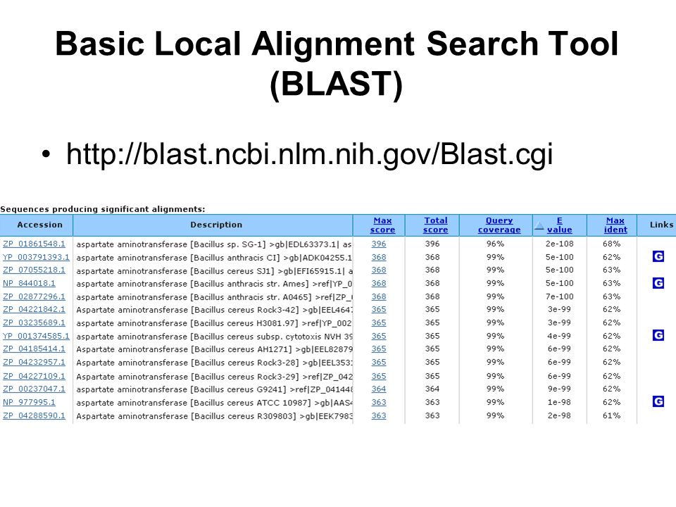 Basic Local Alignment Search Tool (BLAST)