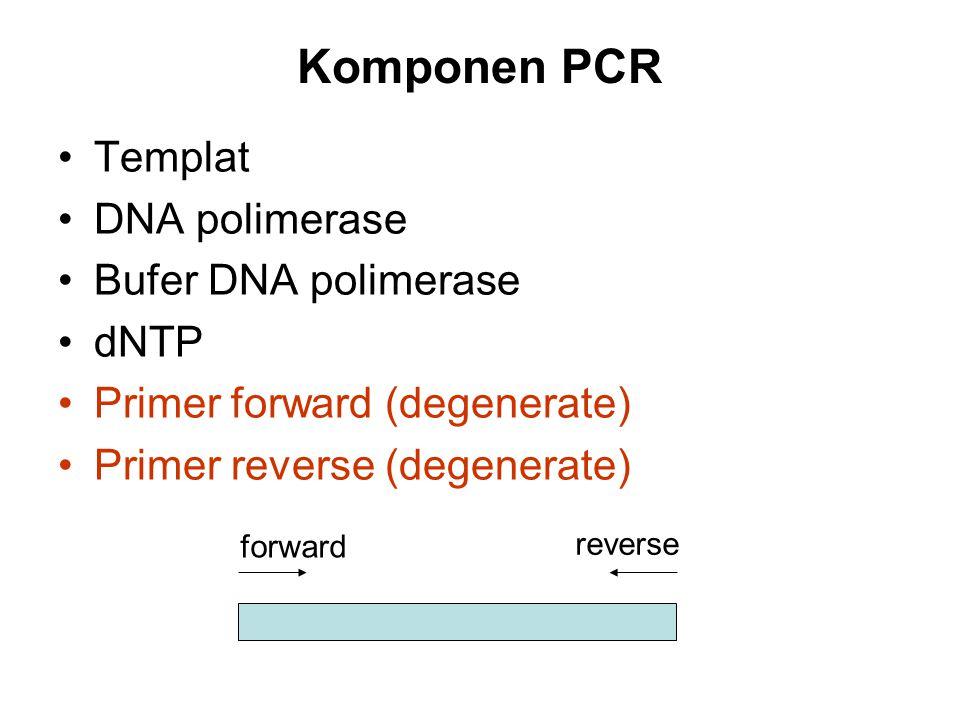 Komponen PCR Templat DNA polimerase Bufer DNA polimerase dNTP