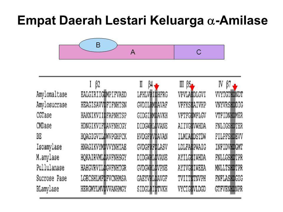 Empat Daerah Lestari Keluarga -Amilase