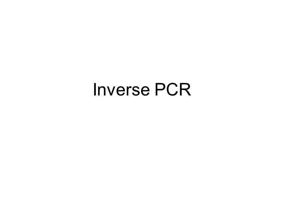 Inverse PCR