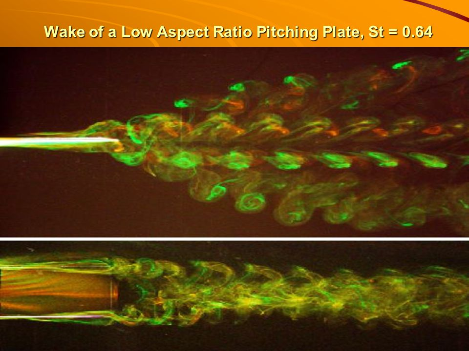 Wake of a Low Aspect Ratio Pitching Plate, St = 0.64