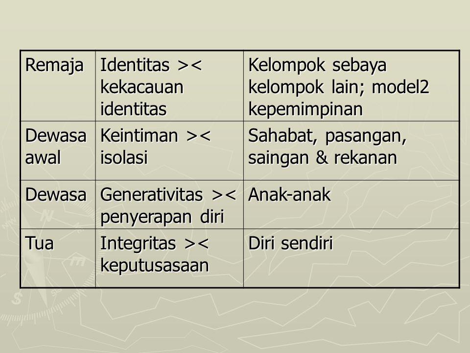Remaja Identitas >< kekacauan identitas. Kelompok sebaya kelompok lain; model2 kepemimpinan. Dewasa awal.