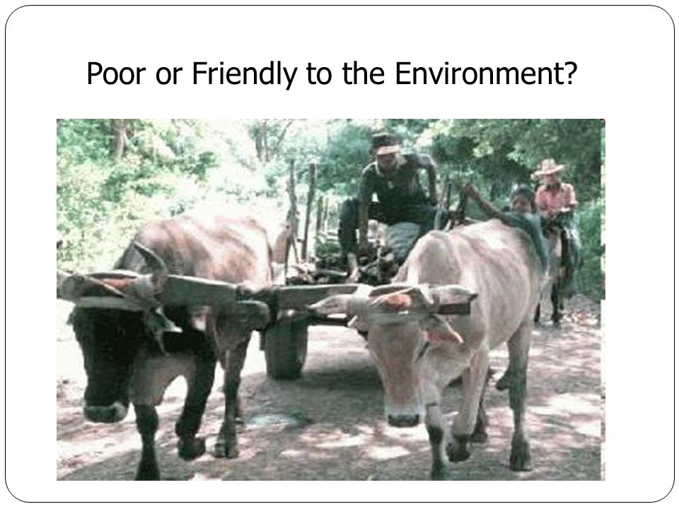 Poor or Friendly to the Environment