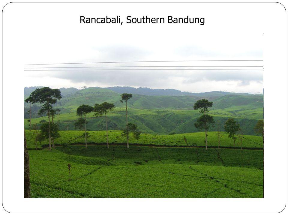 Rancabali, Southern Bandung