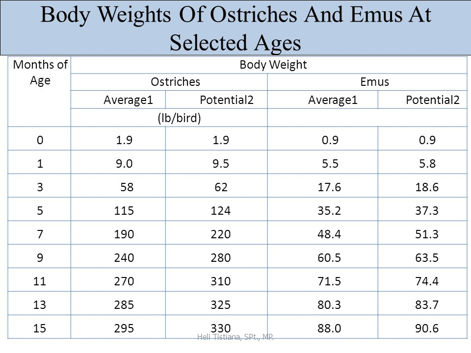 Body Weights Of Ostriches And Emus At Selected Ages