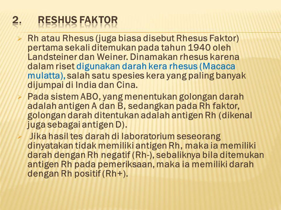 2. Reshus Faktor