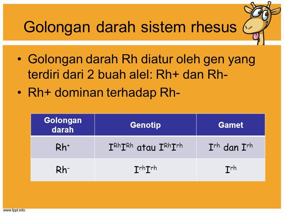 Golongan darah sistem rhesus