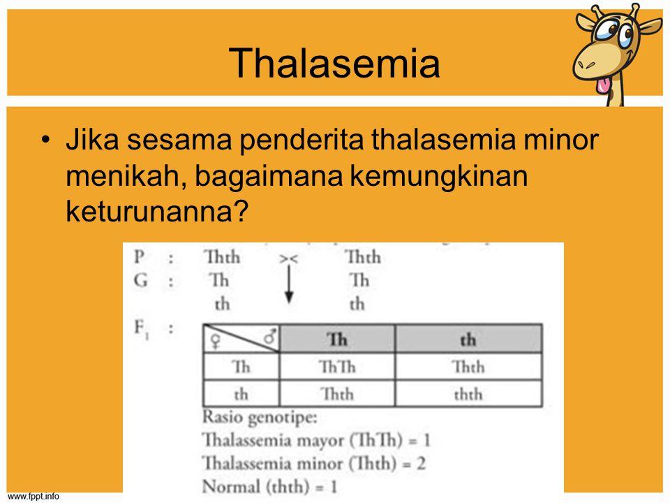 Thalasemia Jika sesama penderita thalasemia minor menikah, bagaimana kemungkinan keturunanna