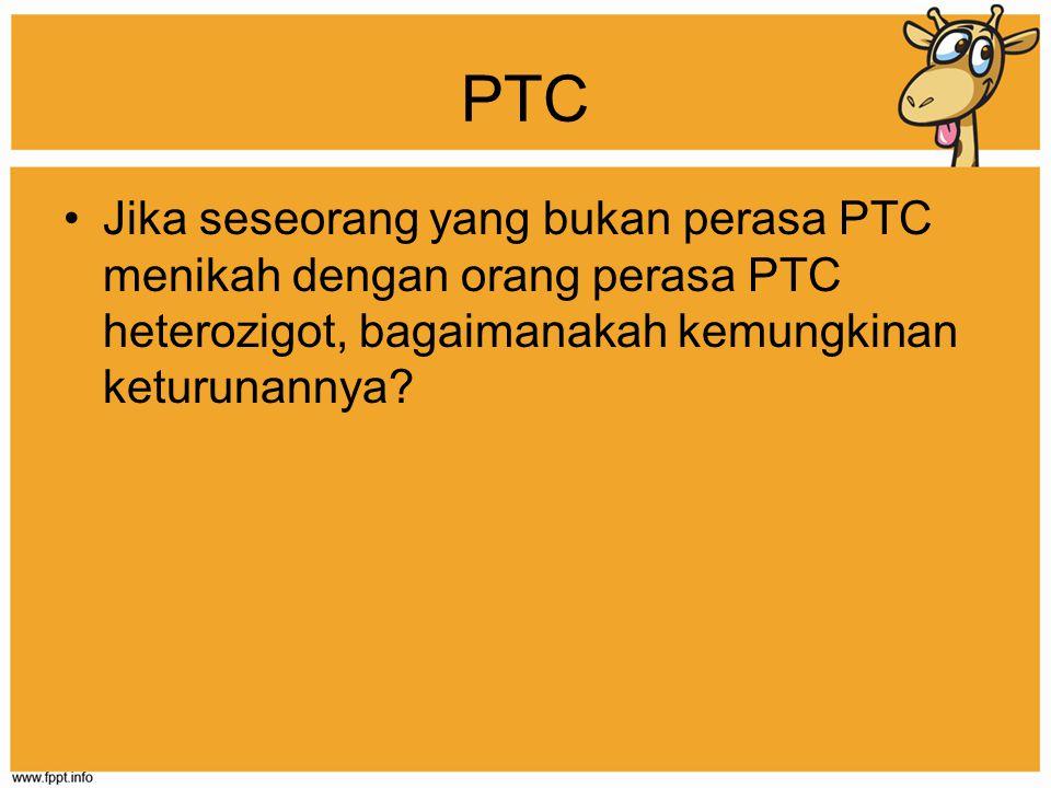 PTC Jika seseorang yang bukan perasa PTC menikah dengan orang perasa PTC heterozigot, bagaimanakah kemungkinan keturunannya