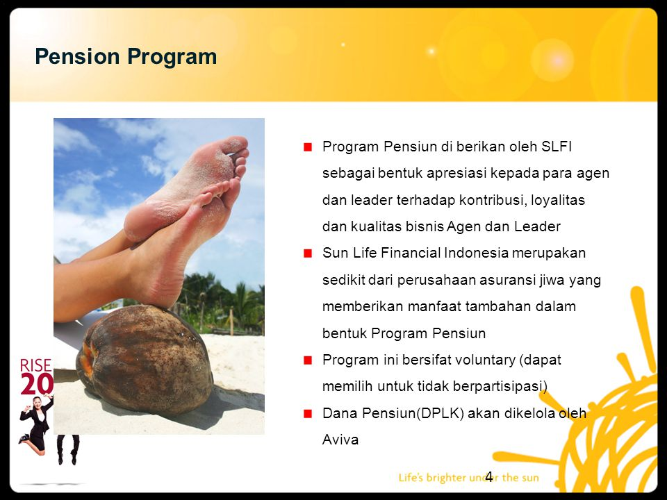 Pension Program