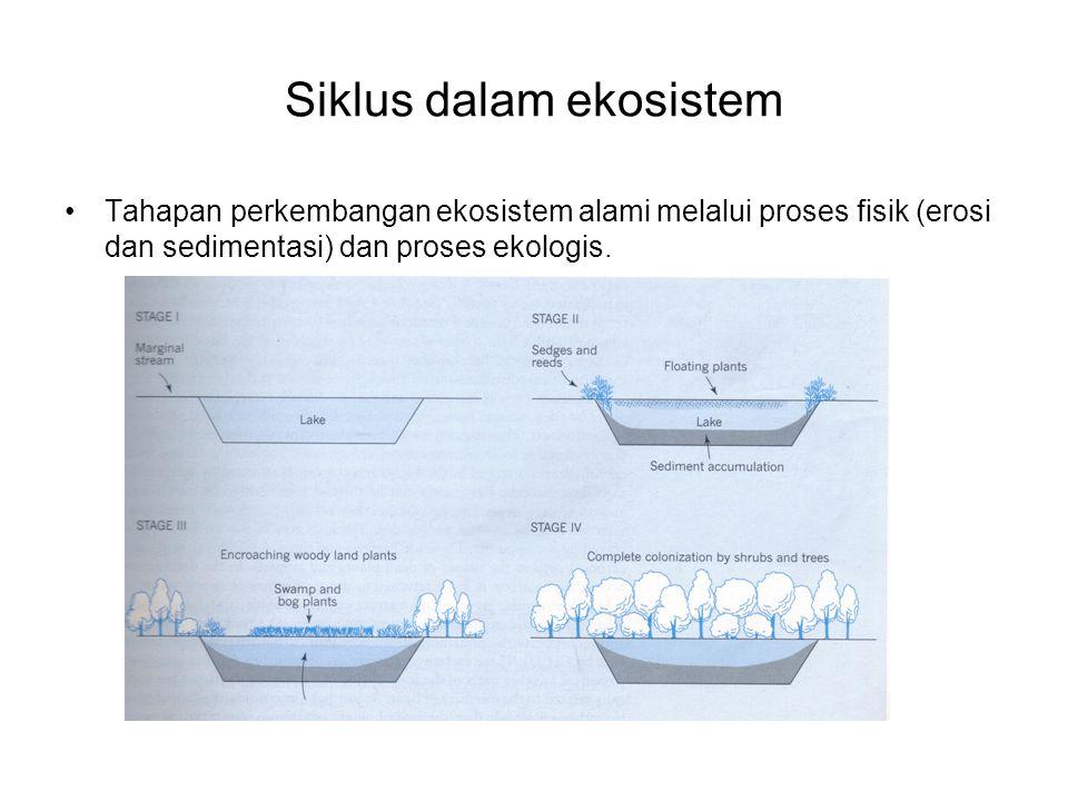 Siklus dalam ekosistem