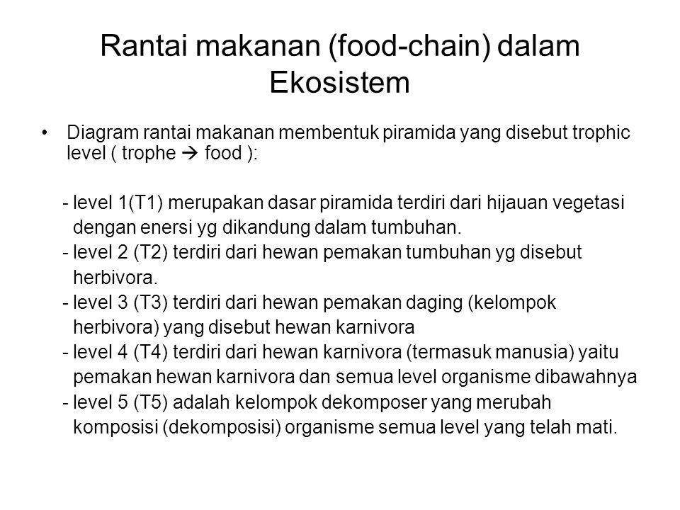Rantai makanan (food-chain) dalam Ekosistem