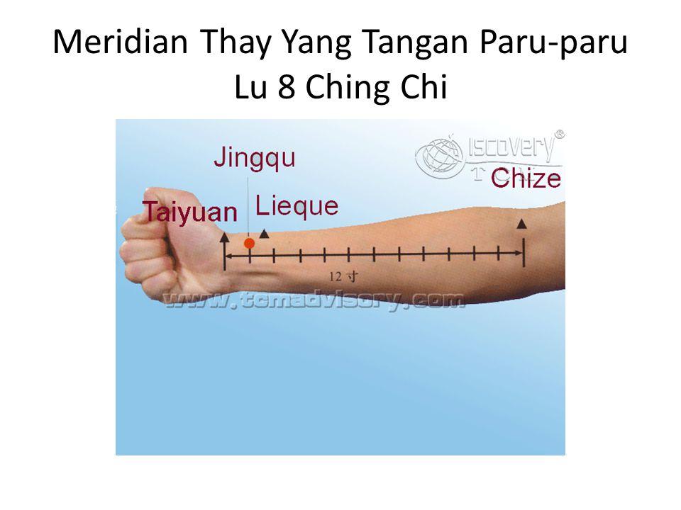 Meridian Thay Yang Tangan Paru-paru Lu 8 Ching Chi