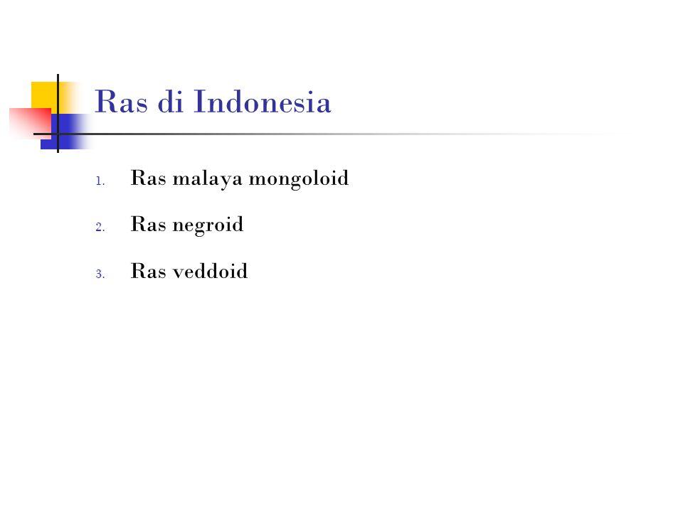 Ras di Indonesia Ras malaya mongoloid Ras negroid Ras veddoid