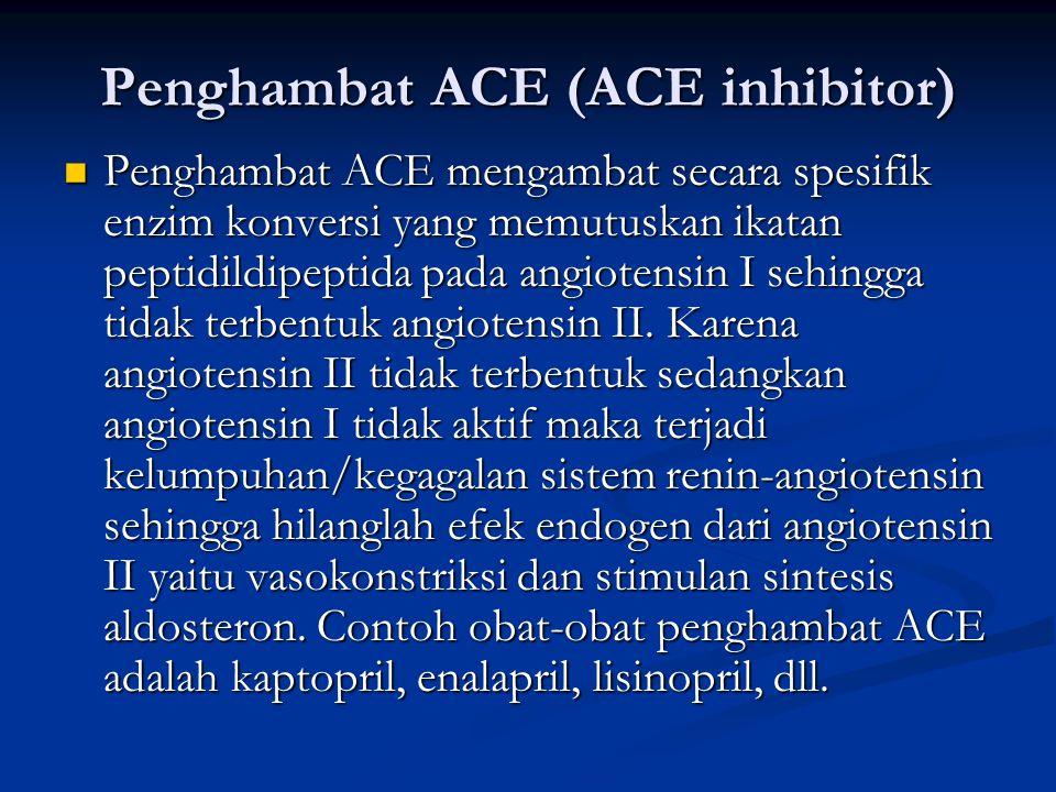 Penghambat ACE (ACE inhibitor)