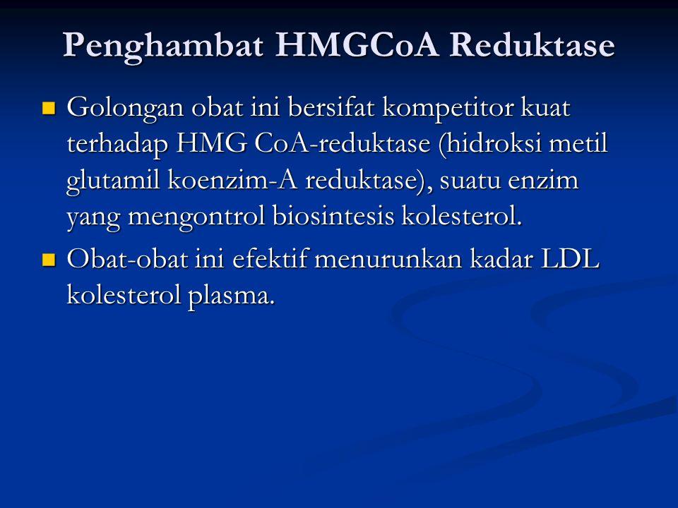 Penghambat HMGCoA Reduktase