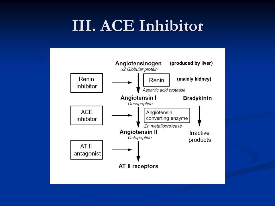 III. ACE Inhibitor