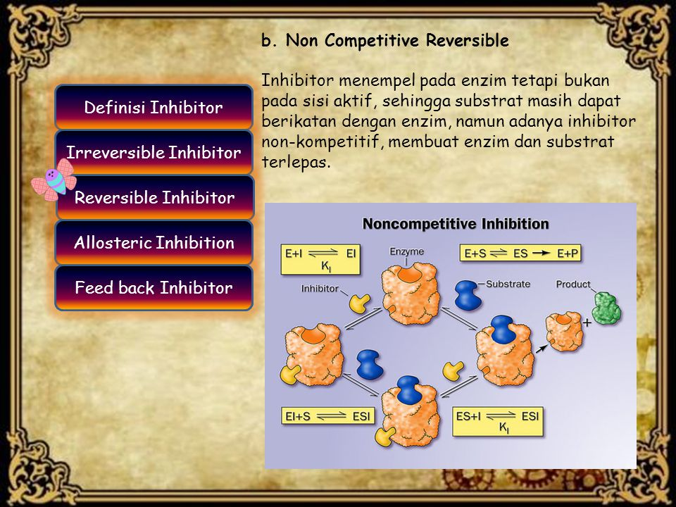 b. Non Competitive Reversible