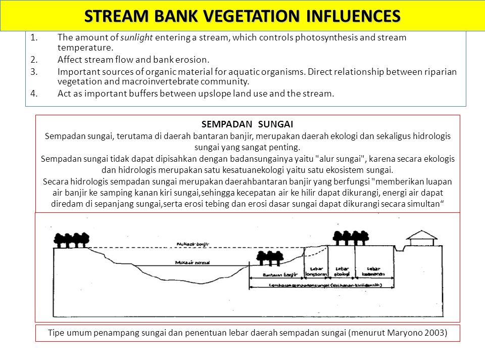 STREAM BANK VEGETATION INFLUENCES