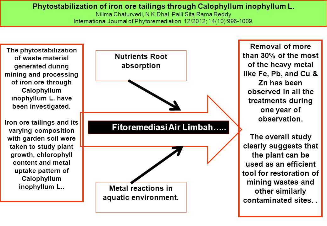 Nutrients Root absorption Metal reactions in aquatic environment.