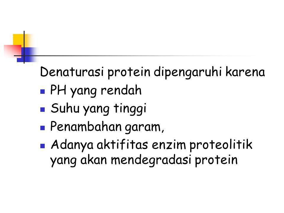 Denaturasi protein dipengaruhi karena