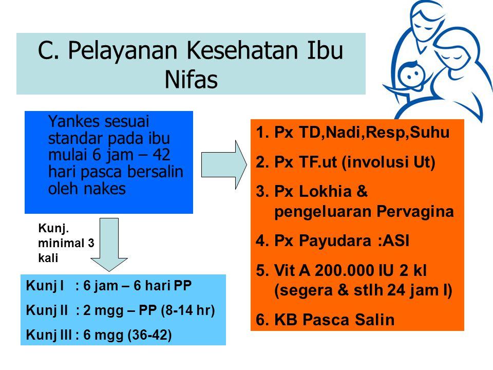 C. Pelayanan Kesehatan Ibu Nifas