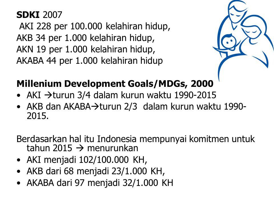 SDKI 2007 AKI 228 per 100.000 kelahiran hidup, AKB 34 per 1.000 kelahiran hidup, AKN 19 per 1.000 kelahiran hidup,