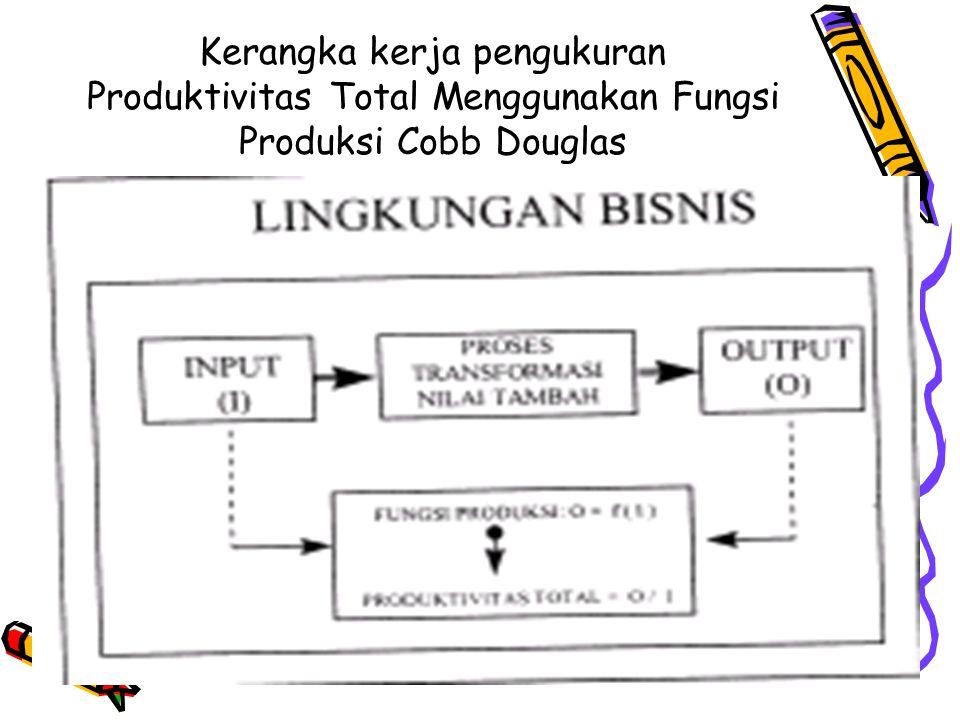 Kerangka kerja pengukuran Produktivitas Total Menggunakan Fungsi Produksi Cobb Douglas