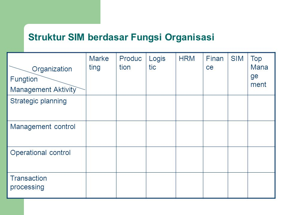 Struktur SIM berdasar Fungsi Organisasi
