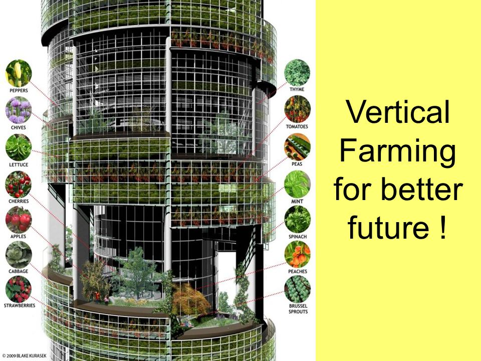 Vertical Farming for better future !