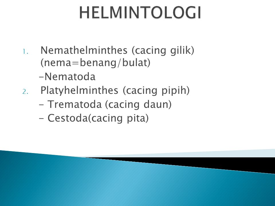 HELMINTOLOGI Nemathelminthes (cacing gilik) (nema=benang/bulat)