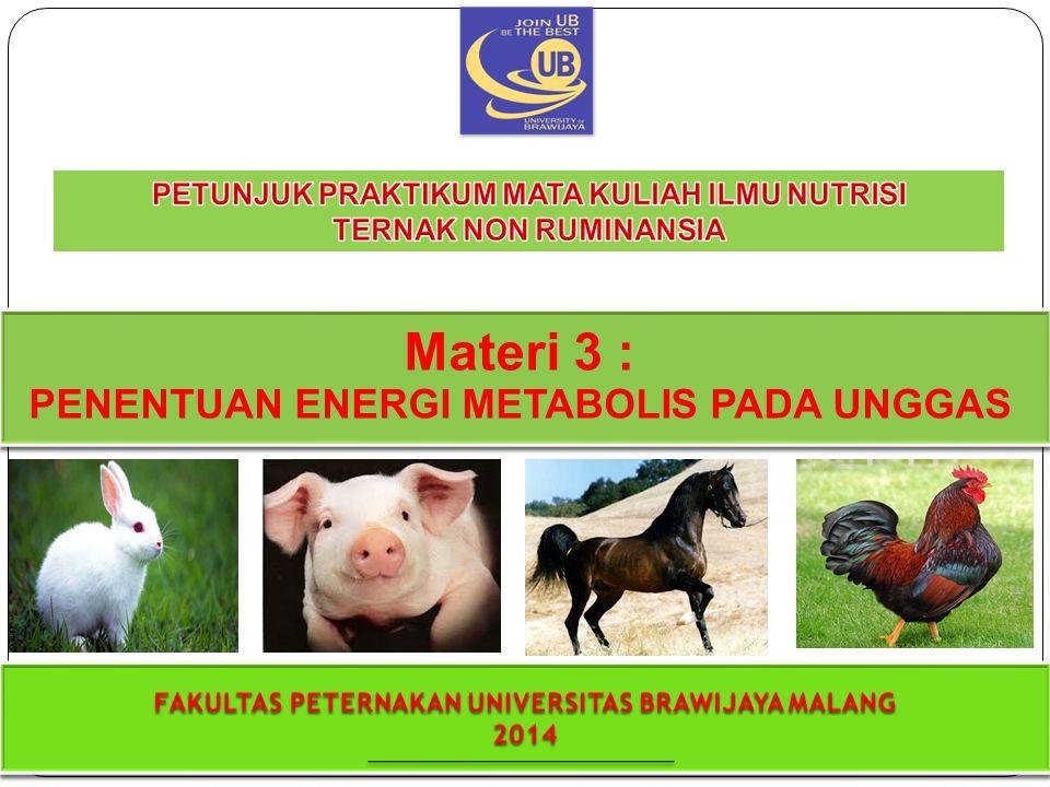 Materi 3 : PENENTUAN ENERGI METABOLIS PADA UNGGAS