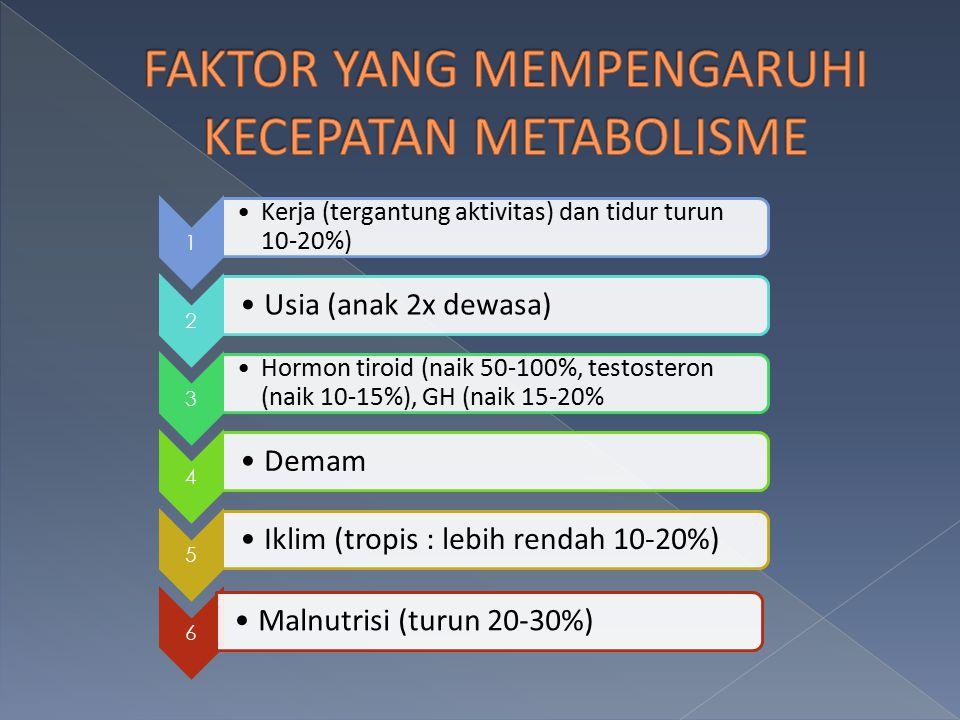 FAKTOR YANG MEMPENGARUHI KECEPATAN METABOLISME