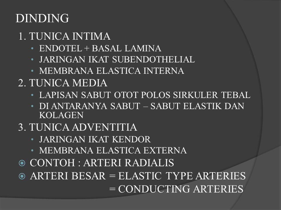 DINDING 1. TUNICA INTIMA 2. TUNICA MEDIA 3. TUNICA ADVENTITIA
