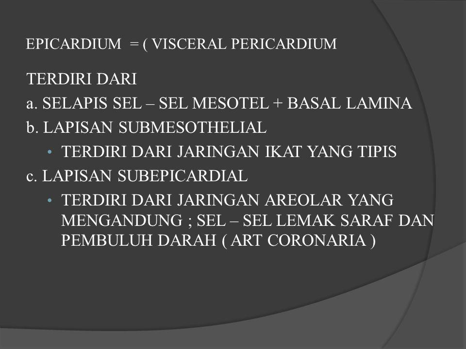 EPICARDIUM = ( VISCERAL PERICARDIUM
