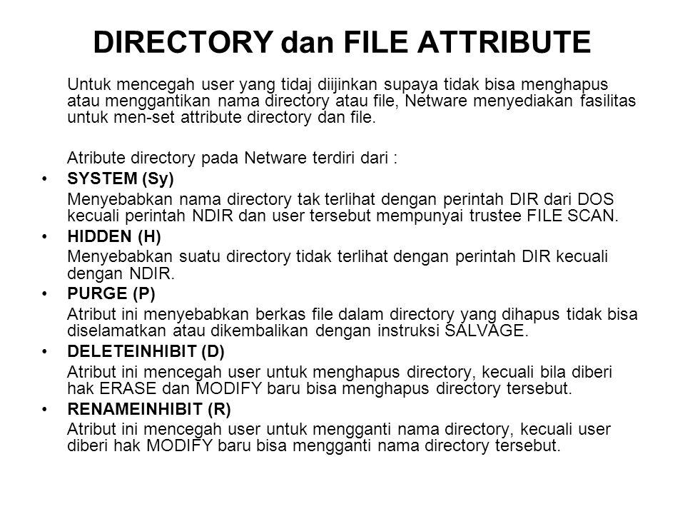 DIRECTORY dan FILE ATTRIBUTE