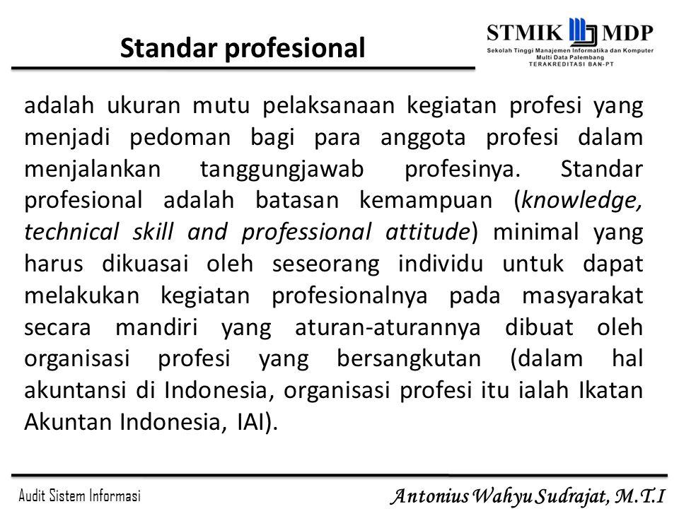 Standar profesional