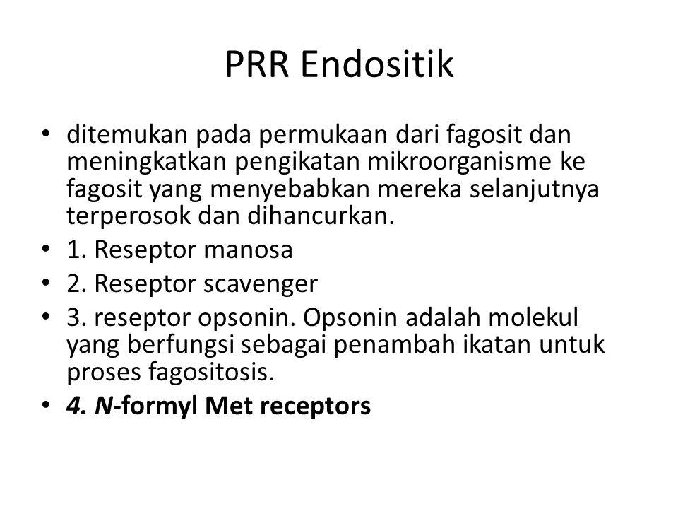PRR Endositik