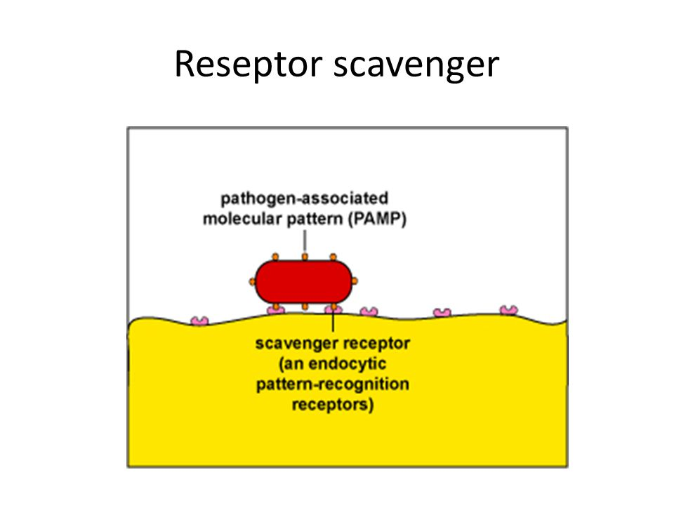 Reseptor scavenger