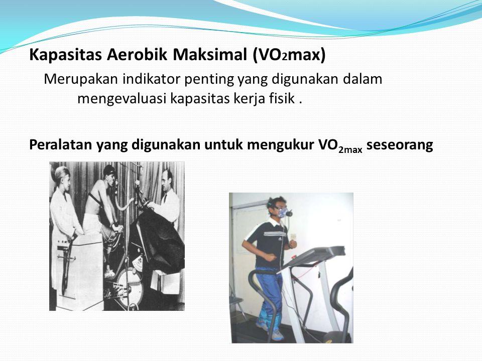 Kapasitas Aerobik Maksimal (VO2max)