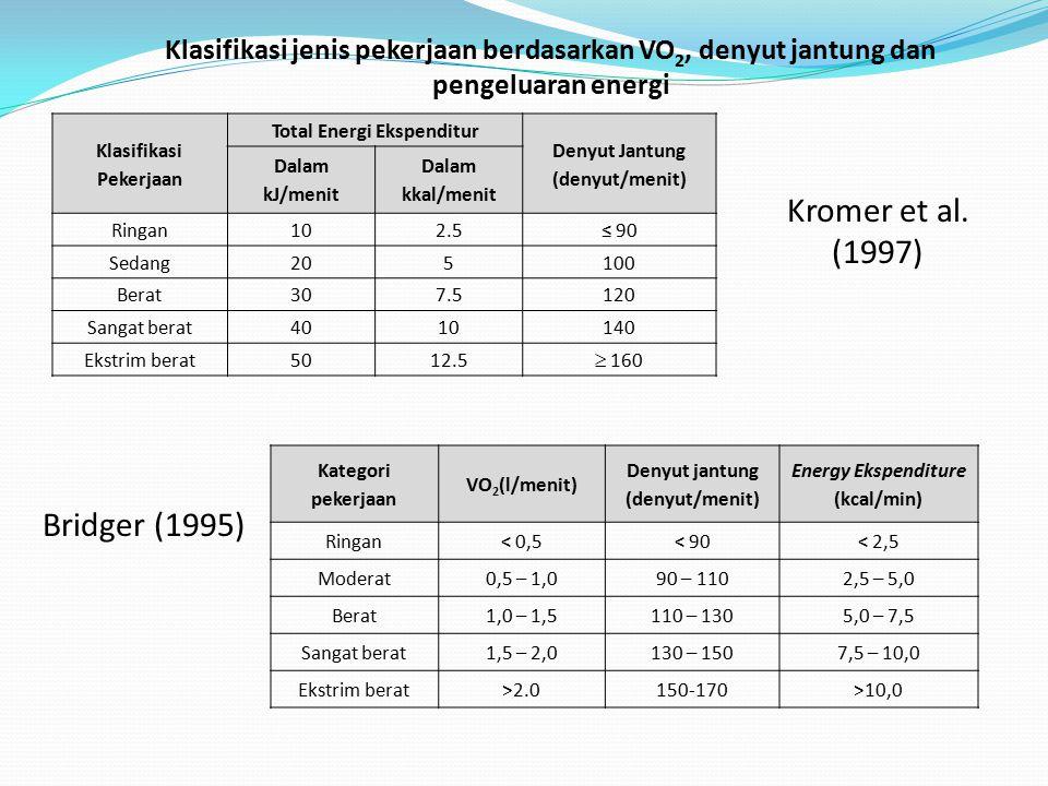 Kromer et al. (1997) Bridger (1995)