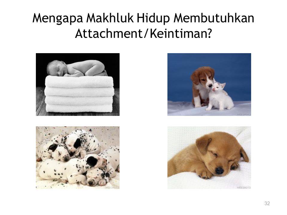 Mengapa Makhluk Hidup Membutuhkan Attachment/Keintiman