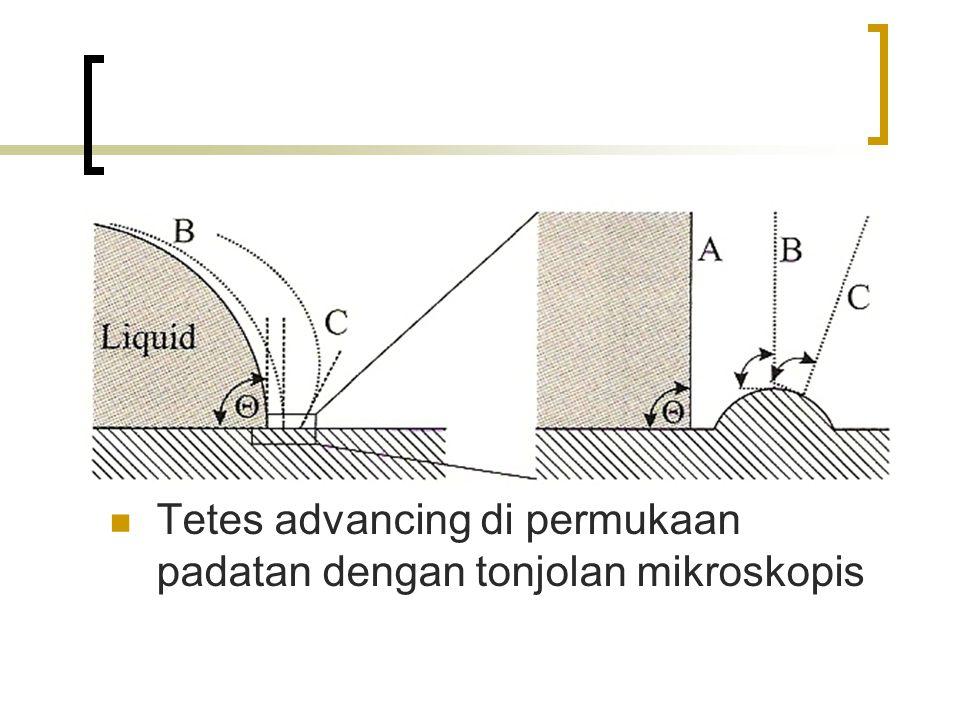 Tetes advancing di permukaan padatan dengan tonjolan mikroskopis